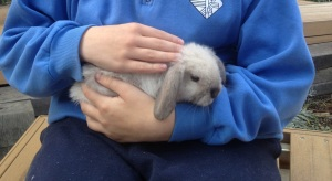Cookie getting cuddles